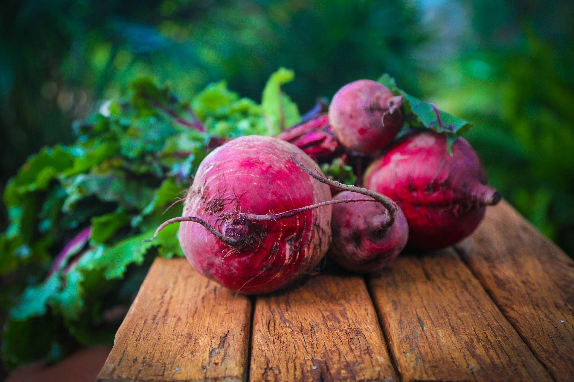 beetroot_stock photo_ COMPRESSED